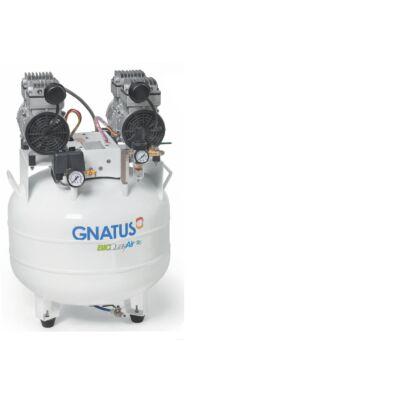 BioQualyAir 65L Compressor